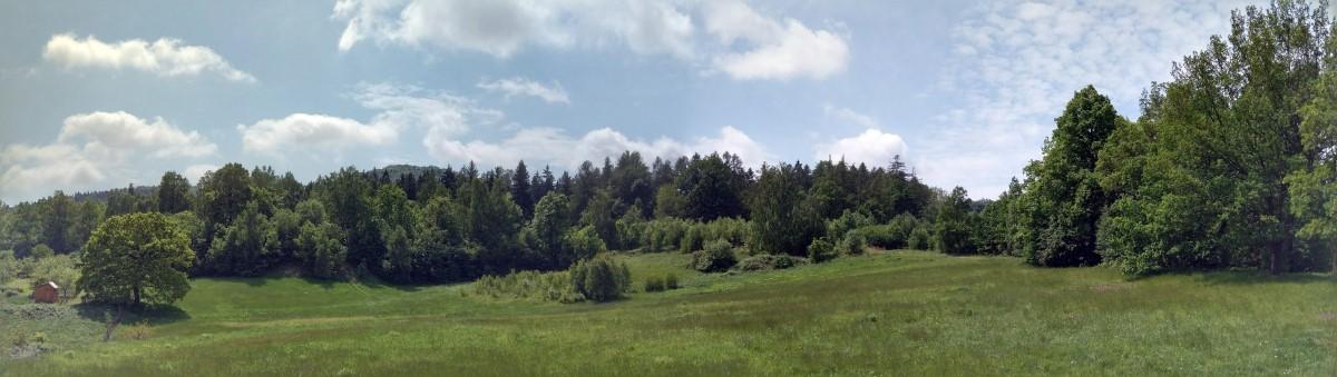 Niedźwiadki (niem. Butter Berg) - trójwierzchołkowe wzniesienie 604m, 623m i 629m n.p.m., w południowo-zachodniej Polsce, w Sudetach Środkowych, w Górach Wałbrzyskich.