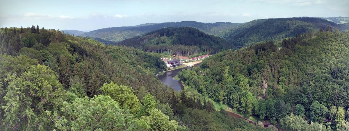 Zamek Grodno (niem. Kynsburg) – zamek położony w południowej części Gór Wałbrzyskich na szczycie góry Choina (450 m n.p.m.) wznoszącej się nad lewym brzegiem Bystrzycy.